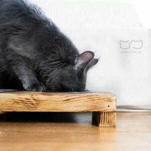 Futternapf für Katzen